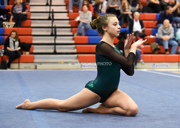 AW Gymnastics 2016 Group 4A-5A Regional Championships-304