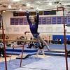 AW Gymnastics 2016 Group 4A-5A Regional Championships-196