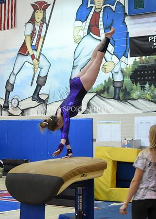 AW Gymnastics 2016 Group 4A-5A Regional Championships-69