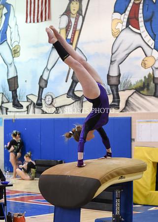 AW Gymnastics 2016 Group 4A-5A Regional Championships-67