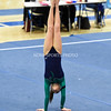 AW Gymnastics 2016 Group 4A-5A Regional Championships-206