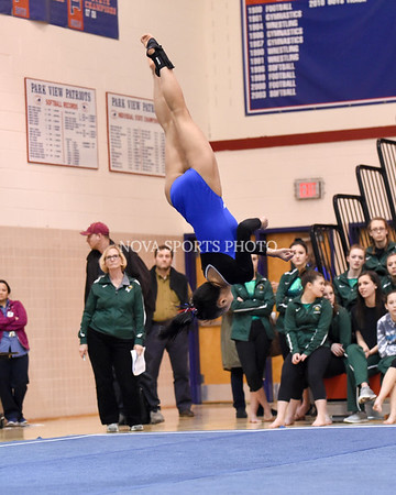 AW Gymnastics 2016 Group 4A-5A Regional Championships-373