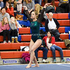 AW Gymnastics 2016 Group 4A-5A Regional Championships-283