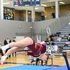 Gymnastics Sections 2-16-17