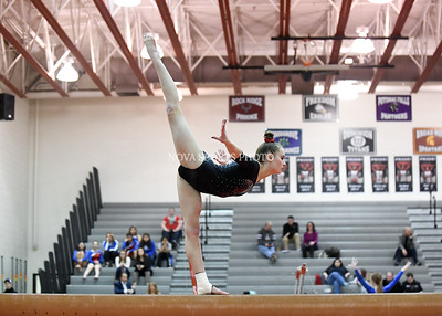 Gymnastics: 2017 Conference 21 East Championship 2.1.17