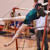 AW Gymnastics Conference 21 Championships-2