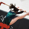 AW Gymnastics Conference 21 Championships-3