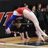 AW Gymnastics Conference 21 Championships-6