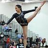 AW Gymnastics Conference 21 Championships-15