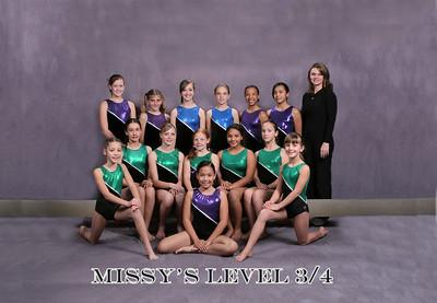 Gymnastics Level 3/4