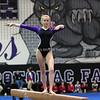 AW Gymnastics Potomac Falls Meet-13