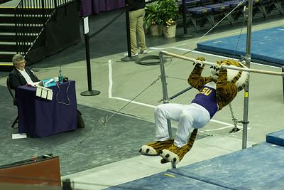 gymnastics-9882