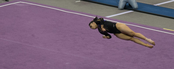 gymnastics-0306