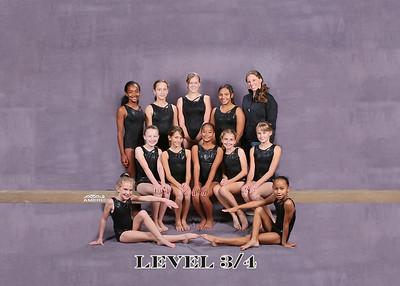 Level 3/4 2008
