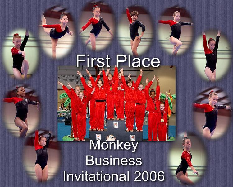 Monkey 2006