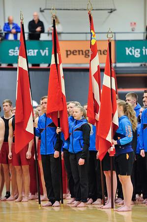 LGI Gymnastik Galla JMBA 2014 Arenaen Nyk. M.