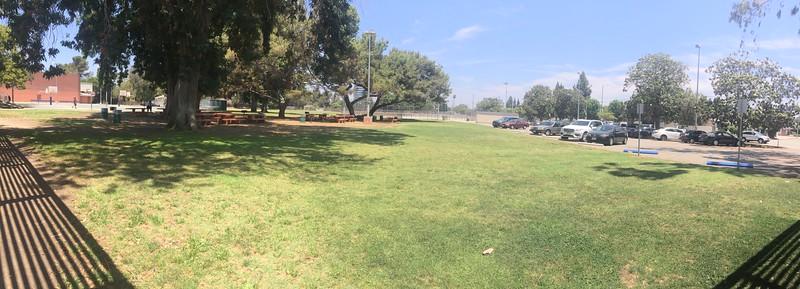 Lawn View # 1