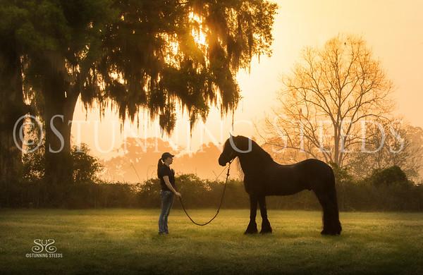 Big Rock Equestrian Center