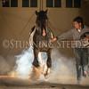 StunningSteedsPhoto-HR-6370
