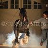 StunningSteedsPhoto-HR-6373