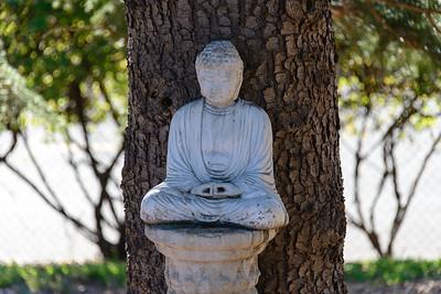 20131201-d6-Jampa Rinpoche-0305