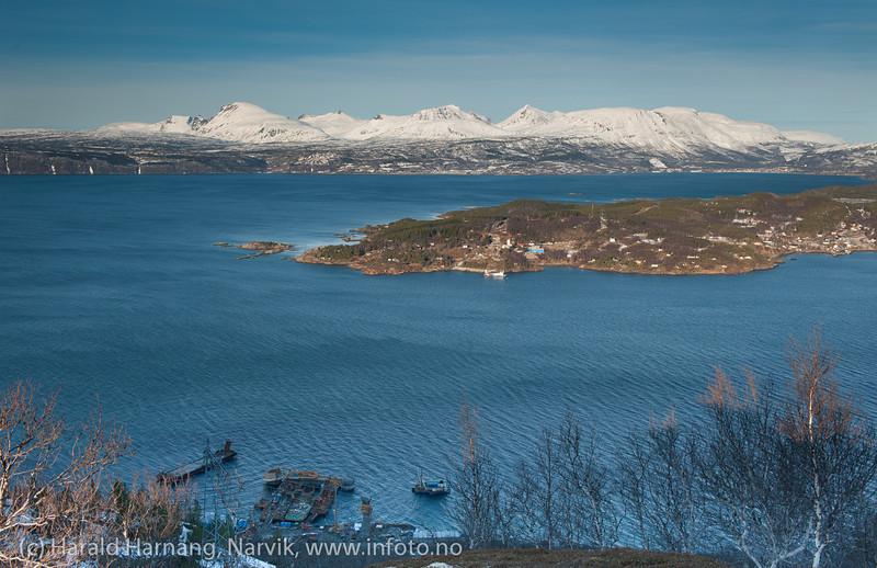 Hålogalandsbrua, arbeid pr 26. februar 2014. Nordside: Øyjord.