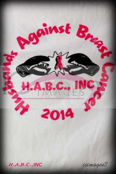 H A B C -1 1