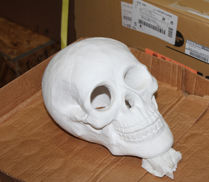 PLASTER SKULL FROM MICHALES<br /> PAINTED GLOSS WHITE .