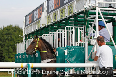 Barrier Trials - Lingfield August 29
