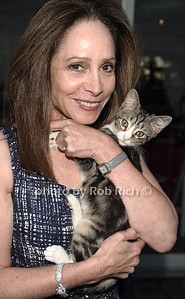 Chairwoman Gale Drucker and rescue kitten