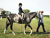 Young equestrian Frankie Lane competes at the