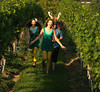 Fairys from the upcoming show A Midsummer's Nights Dream at Bridgehampton High School frolick in the vineyard at