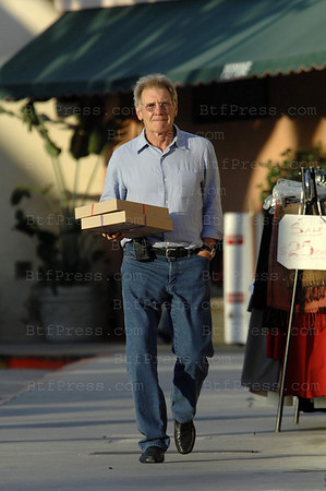 Harrison ford make some shopping for Calista in Brentwood California on November 10,2008.