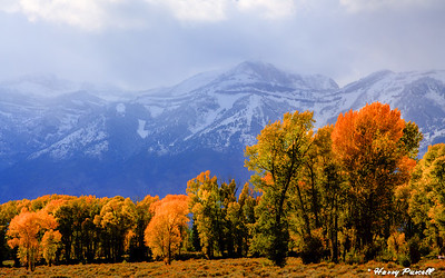 Fall in the Grand Tetons, Wyoning