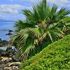 Wailea Coast, Maui Hawaii