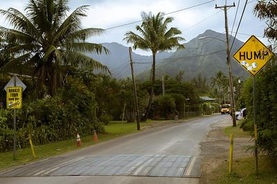 """Kauai has """"humps"""" not """"bumps"""" or """"calming strips"""""""