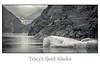 Tracy's fjorge Alaska