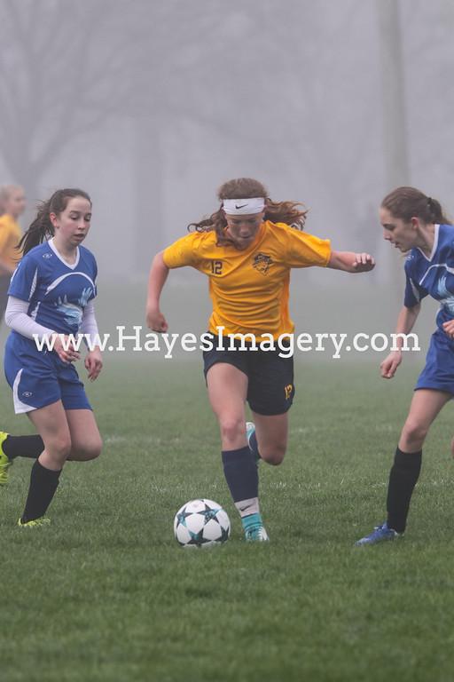 Montour FC Gold V Blue