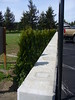New retaining wall, fencing and landscaping