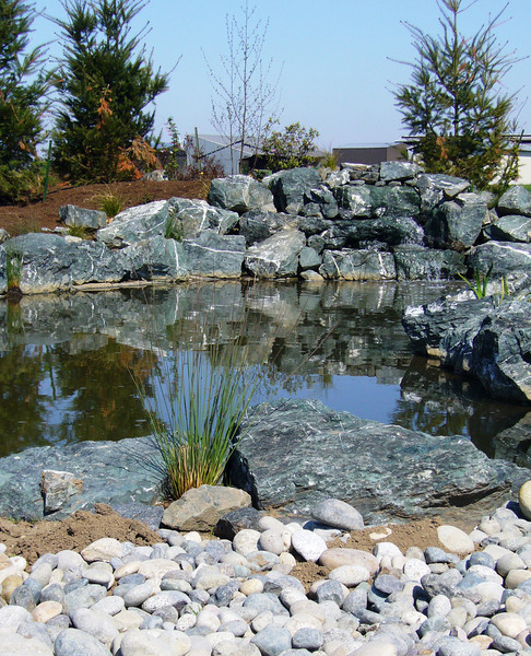 Custom pond and waterfall, new plantings