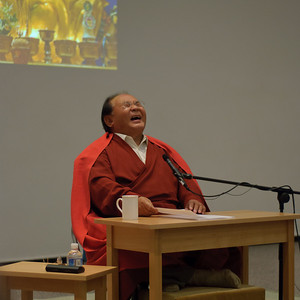 20101118-Sogyal-Rinpoche-8198