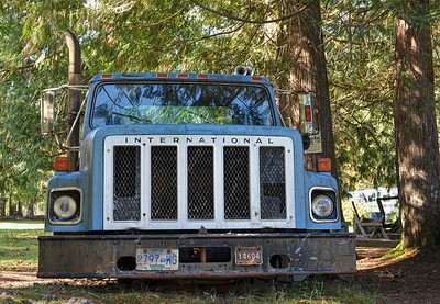 Big Blue Truck-Mclean Mill