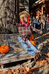 Halloween At Stamp Falls