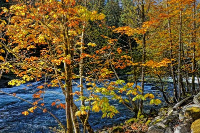 Autumn At The River-Stamp Falls
