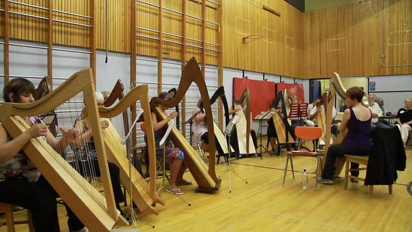 Harp in Wells