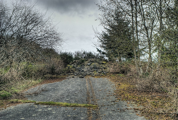 Forgotten Road - Vancouver Island BC Canada