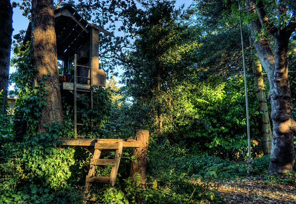 Treehouse - Vancouver Island, BC, Canada
