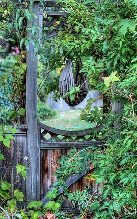 Enchanted Yard - Vancouver Island, BC, Canada