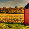 October 12, 2011 :: Country Fall
