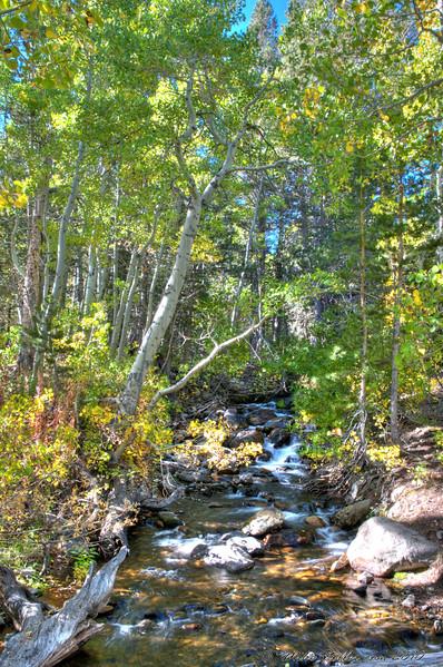 HDR Photo, Virginia Creek